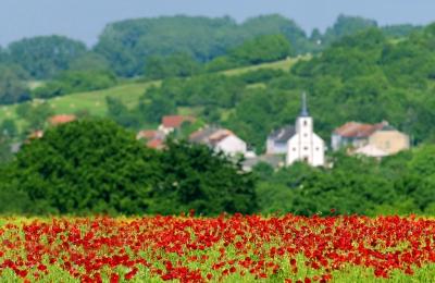 Départements ruraux : 5 bonnes raisons d'y habiter