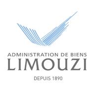 Limouzi, une agence immobilière à Lyon pour vous accompagner